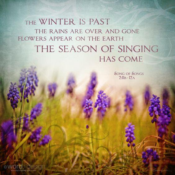 season of spring
